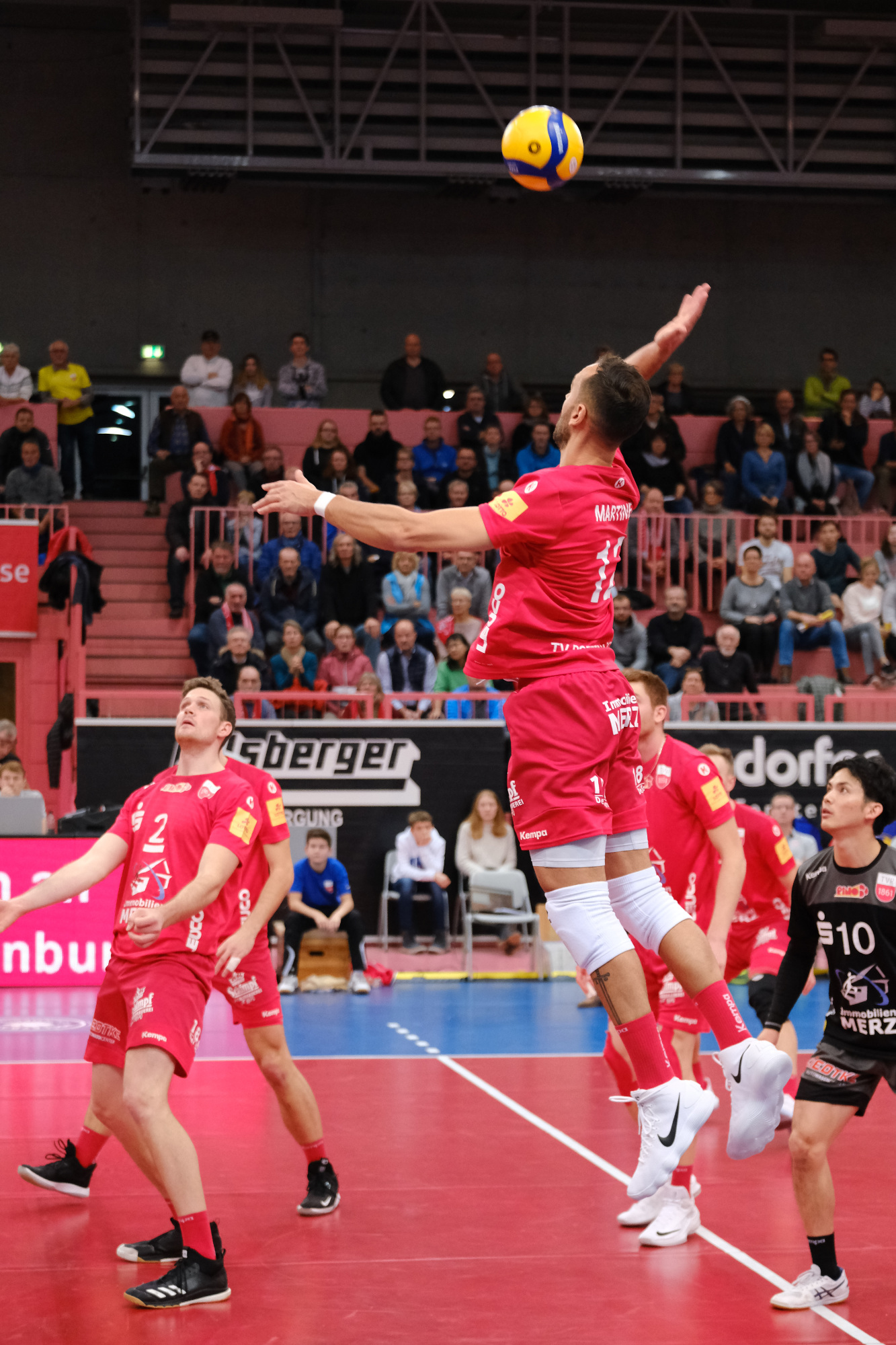 TV Rottenburg vs. United Volleys Frankfurt